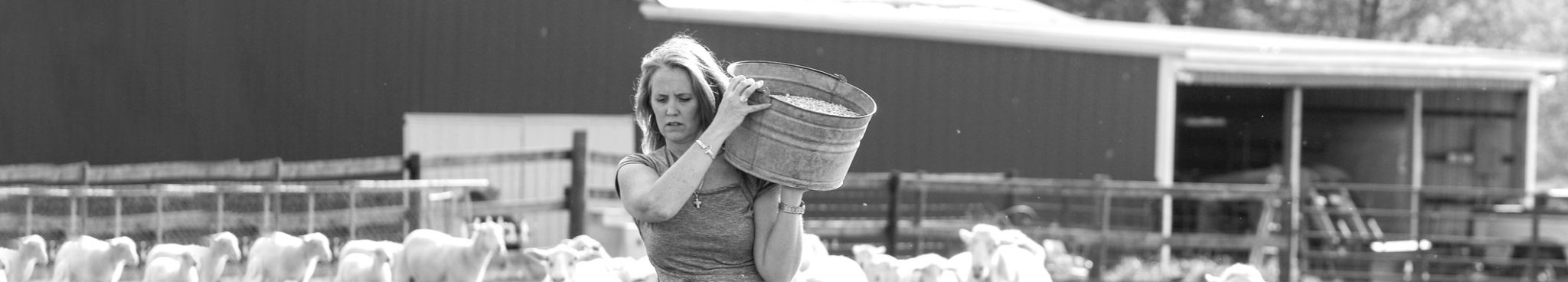 ORIJEN Lamb Freeze-dried Cat Treats - Woman with bucket of feed for sheep - Kelly of M&E Family Farms in Russellville, Kentucky. Trusted supplier of fresh local lamb.